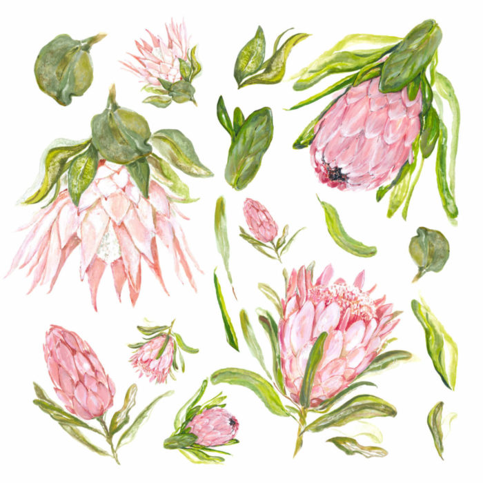 A sheet of protea floral wall decals.